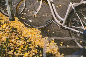 自転車事故で高額の賠償。神奈川県では自転車保険の年度内に加入義務化へ