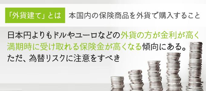 投資目的なら養老保険よりも外貨建てがお得